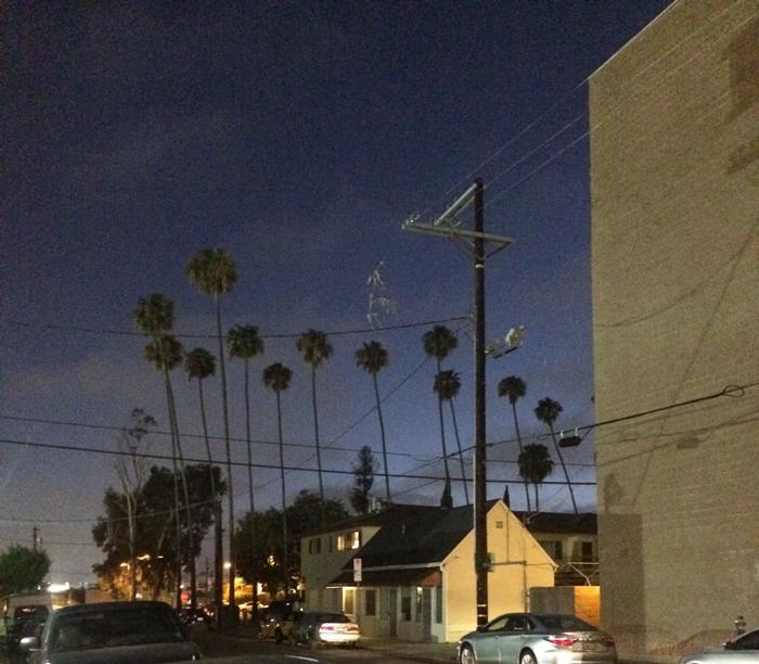 LA-Beitrag